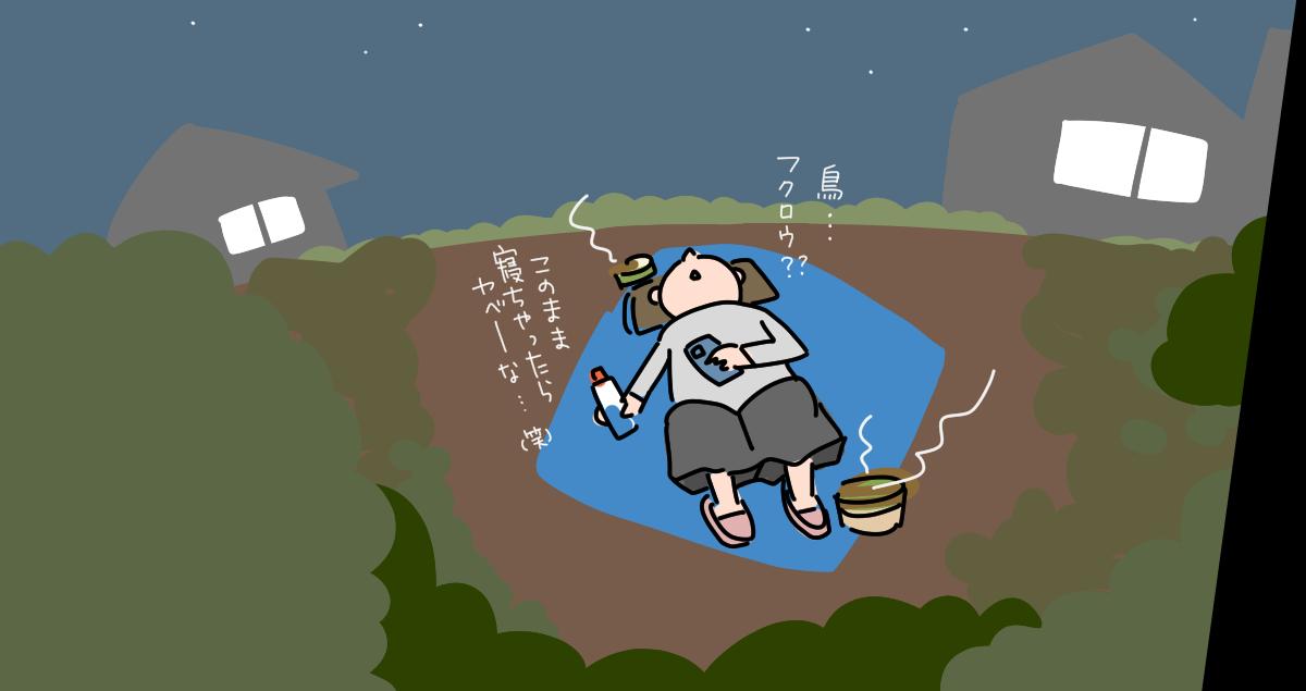 【絵日記】ペルセウス座流星群